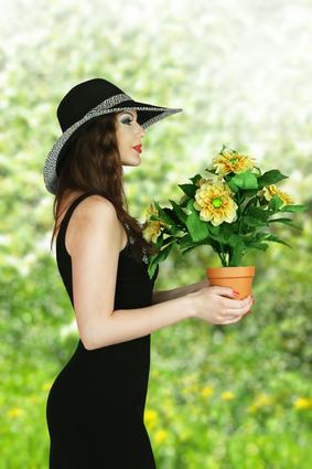 комнатные цветы в подарок женщине