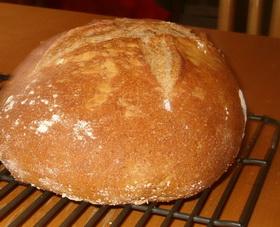 Хлеб сонник